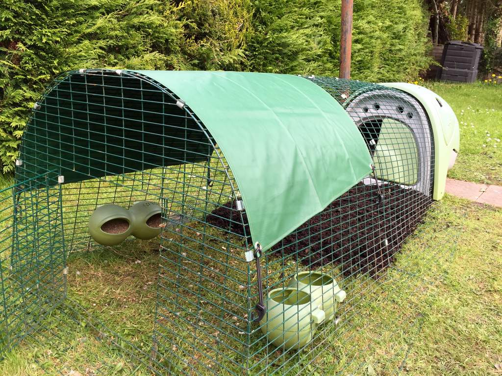 vary bin colors feeder kaytee dp com supplies pig gravity with amazon guinea pet bracket