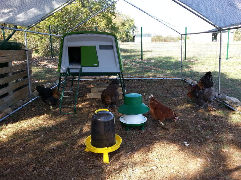 6kg Blenheim Poultry Feeder With Rain Hat With Legs Feeders