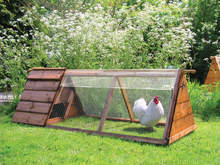 Clear Cover for Chicken Run - 1.5m x 0.9m (E810.0111)