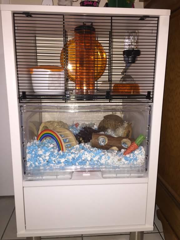 Carefresh Animal Bedding 10l Ultra Hamster Gerbil Bedding