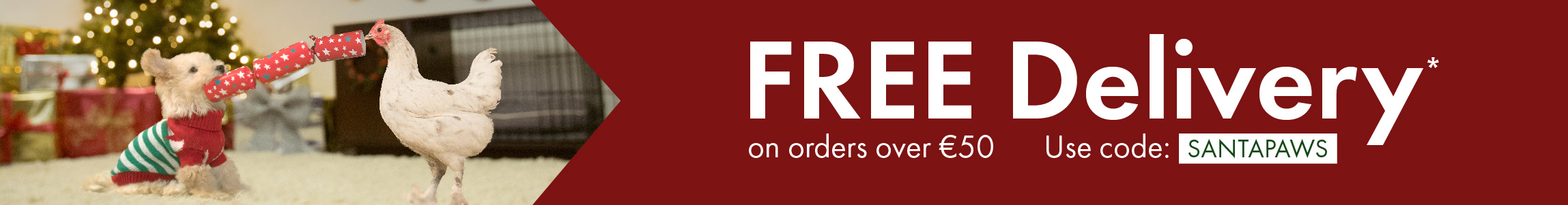 Christmas Promo Free Delivery