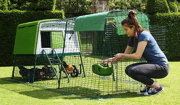 New Eglu Cube Chicken Coop Chicken Keeping Omlet
