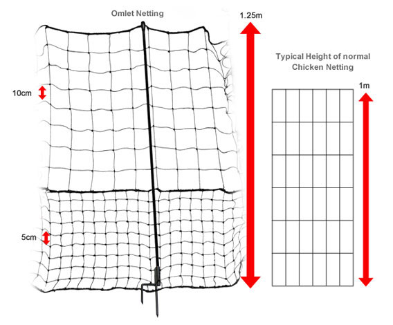 The dimensions of Omlet chicken fencing.
